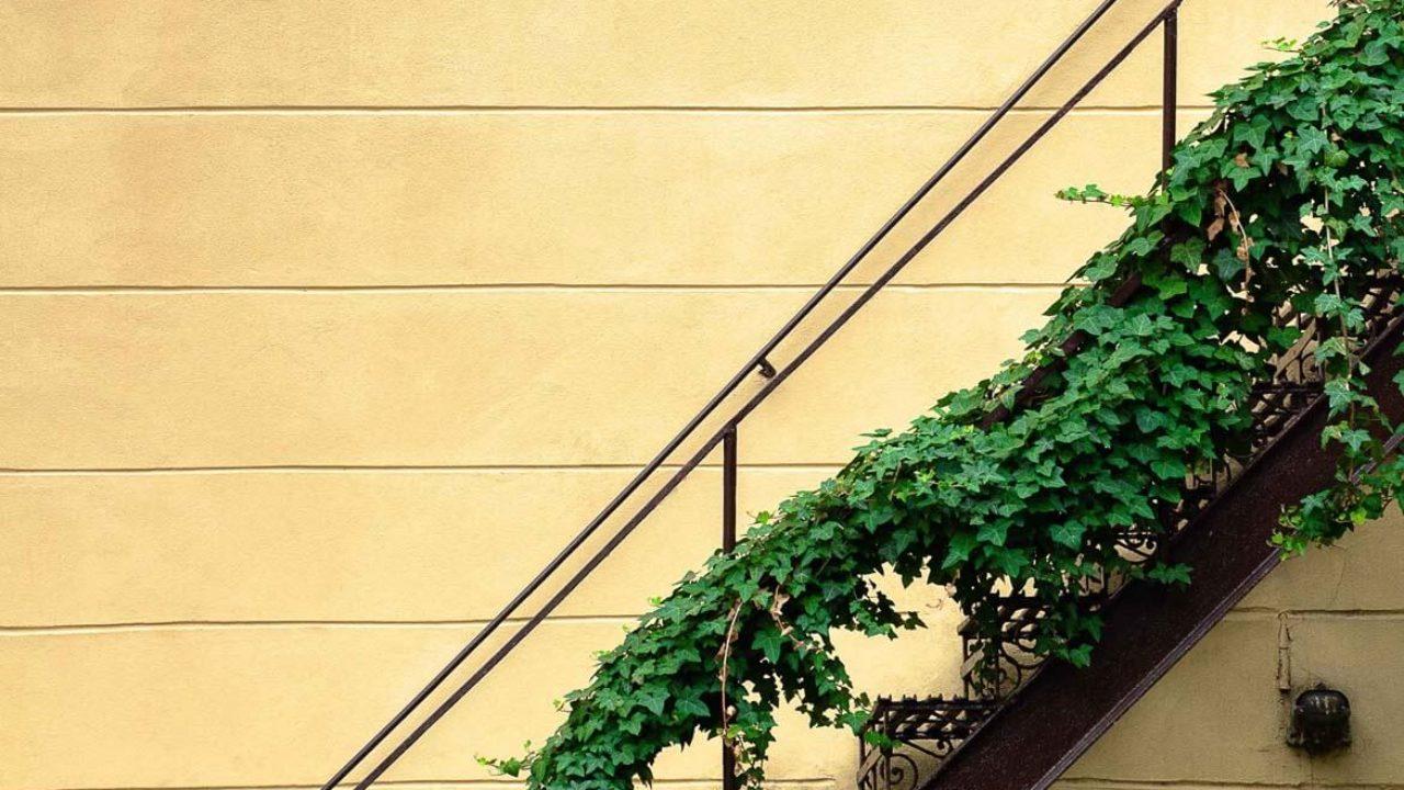 Comment Relooker Un Escalier En Carrelage comment relooker un escalier avec le home staging ? – relook
